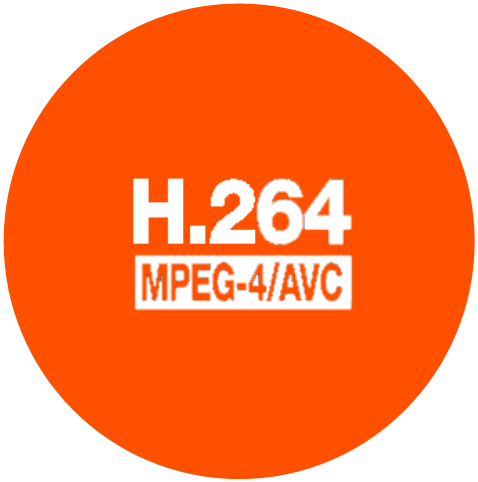 A feature of DVB is H.263 and MPEG 4
